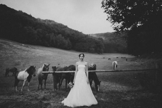Blumen Hochzeit9 Michael Krug