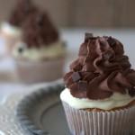 Birds Like Cake: Cannoli Cupcakes